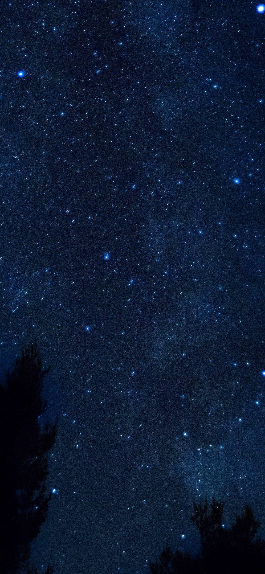 Iphone X Wallpaper Starry Sky Night Trees Hd In 2020 Wallpaper