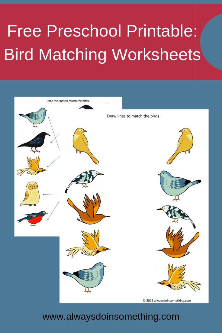 Free Preschool Printable Matching Birds Worksheets Free Preschool Free Preschool Printables Free Kindergarten Worksheets [ 1102 x 735 Pixel ]