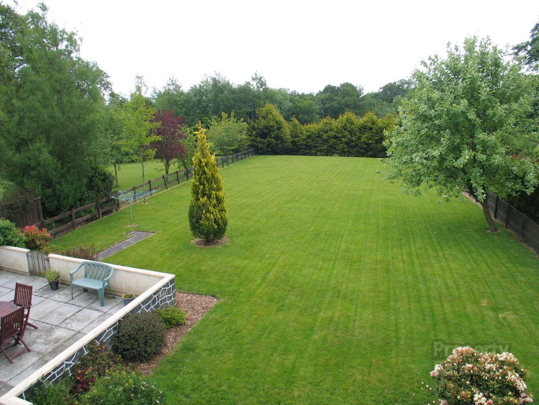 jcgardendesign: Garden Design Lisburn