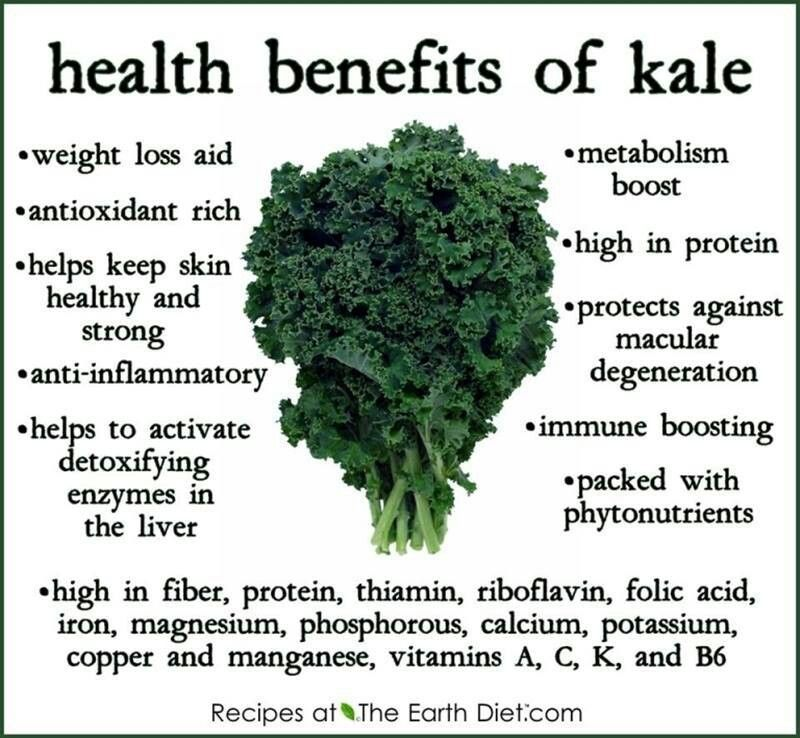 Kale benefits | My recipes | Pinterest | Col rizada ...