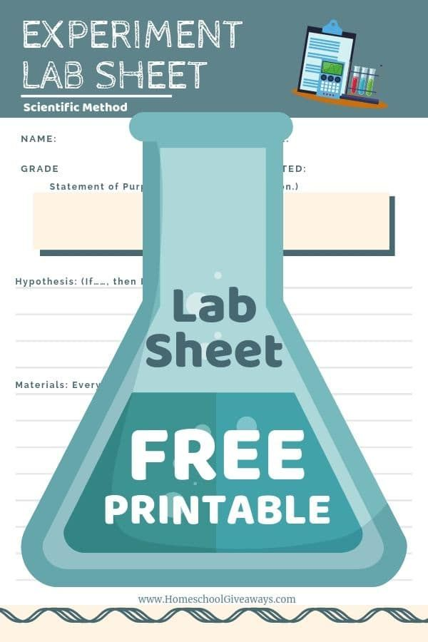 Free Download Scientific Method Lab Sheet For Science Success