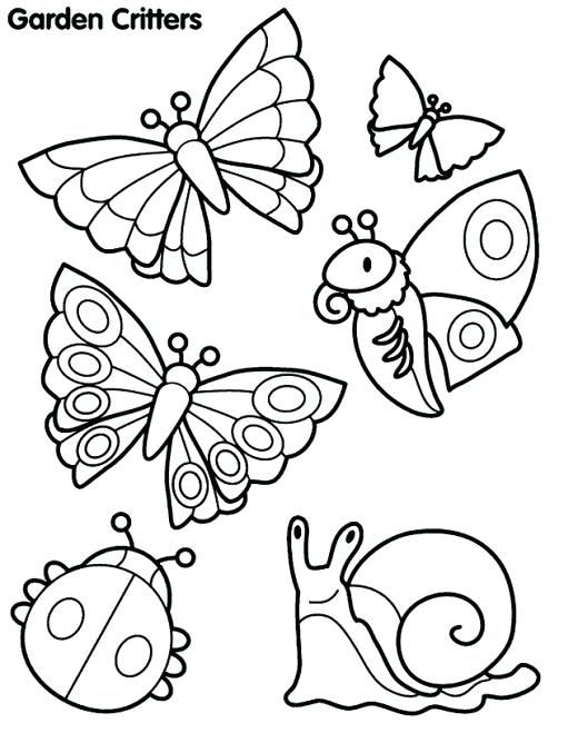 Insect Coloring Pages   Spring coloring pages, Insect ...