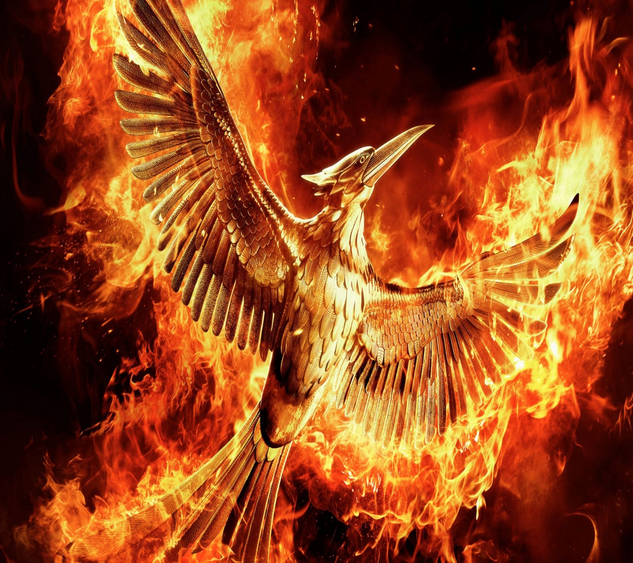 Fire bird. Tap to see 12 HD wallpapers of The Hunger Games