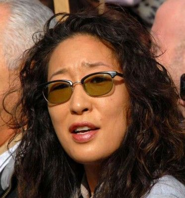 Sandra Oh aka Dr. Cristina Yang on ABC's medical drama Grey's Anatomy has some of the best quotes in TV history. Take a look at the witty and cutty commen