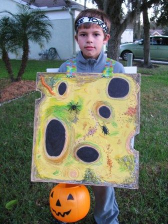 how i made a cheese touch a la diary of a wimpy kid halloween costume hardly the craftiest thing ever just easy and funny