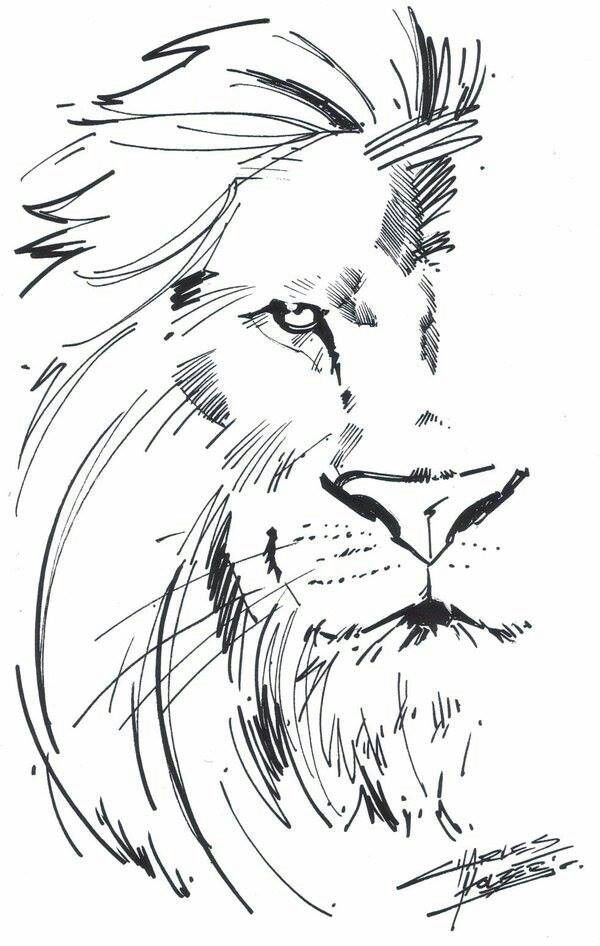 best 25 simple lion drawing ideas on pinterest simple drawing designs easy animals to draw and funny easy drawings