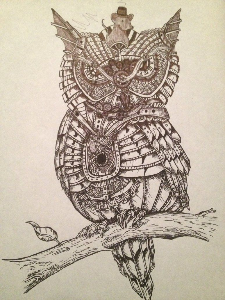owl steampunk drawings - Google Search | Steampunk drawing ...