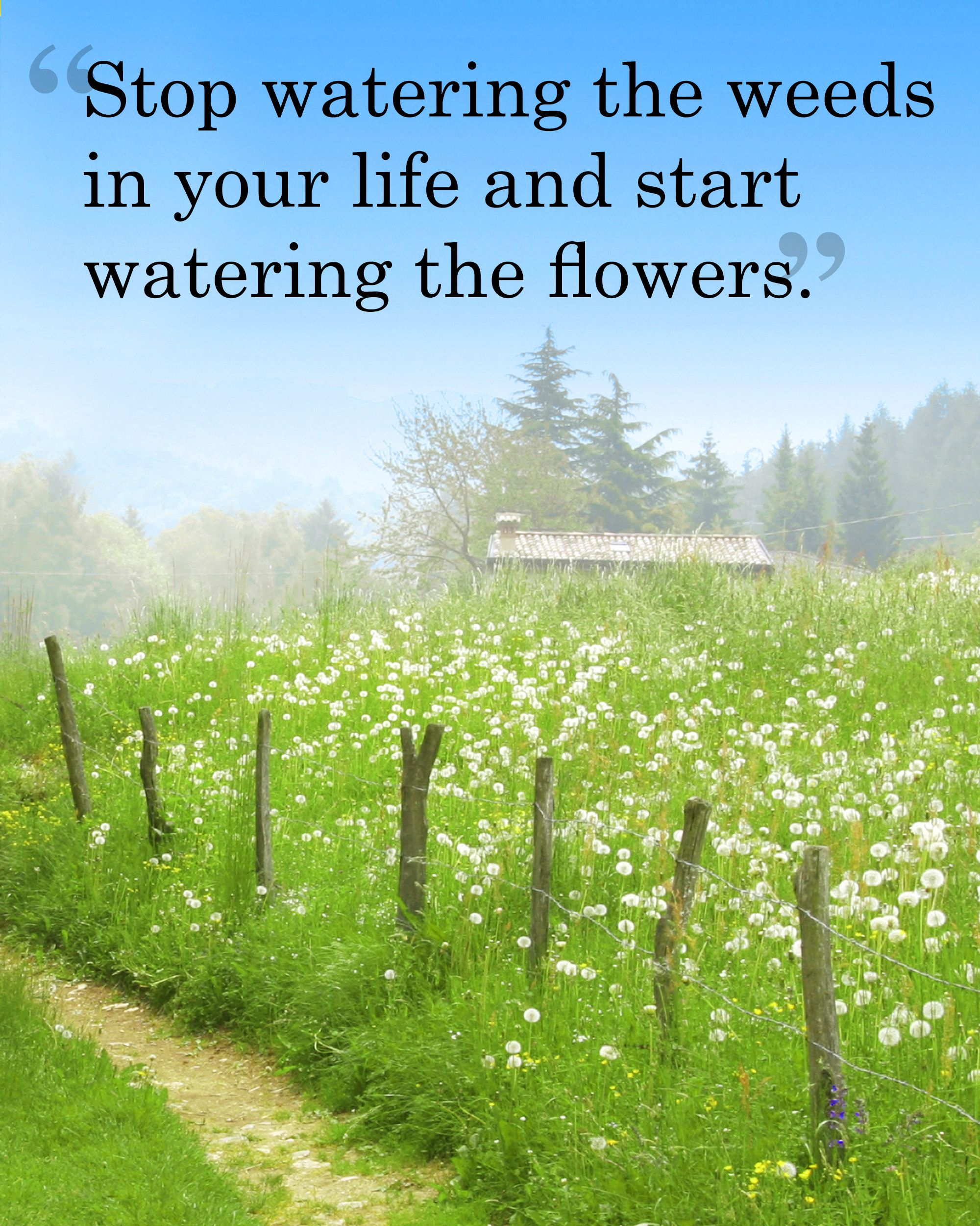 Inspirational Spring Quotes And Sayings: 25 Beautiful Quotes That Will Give You Spring Fever