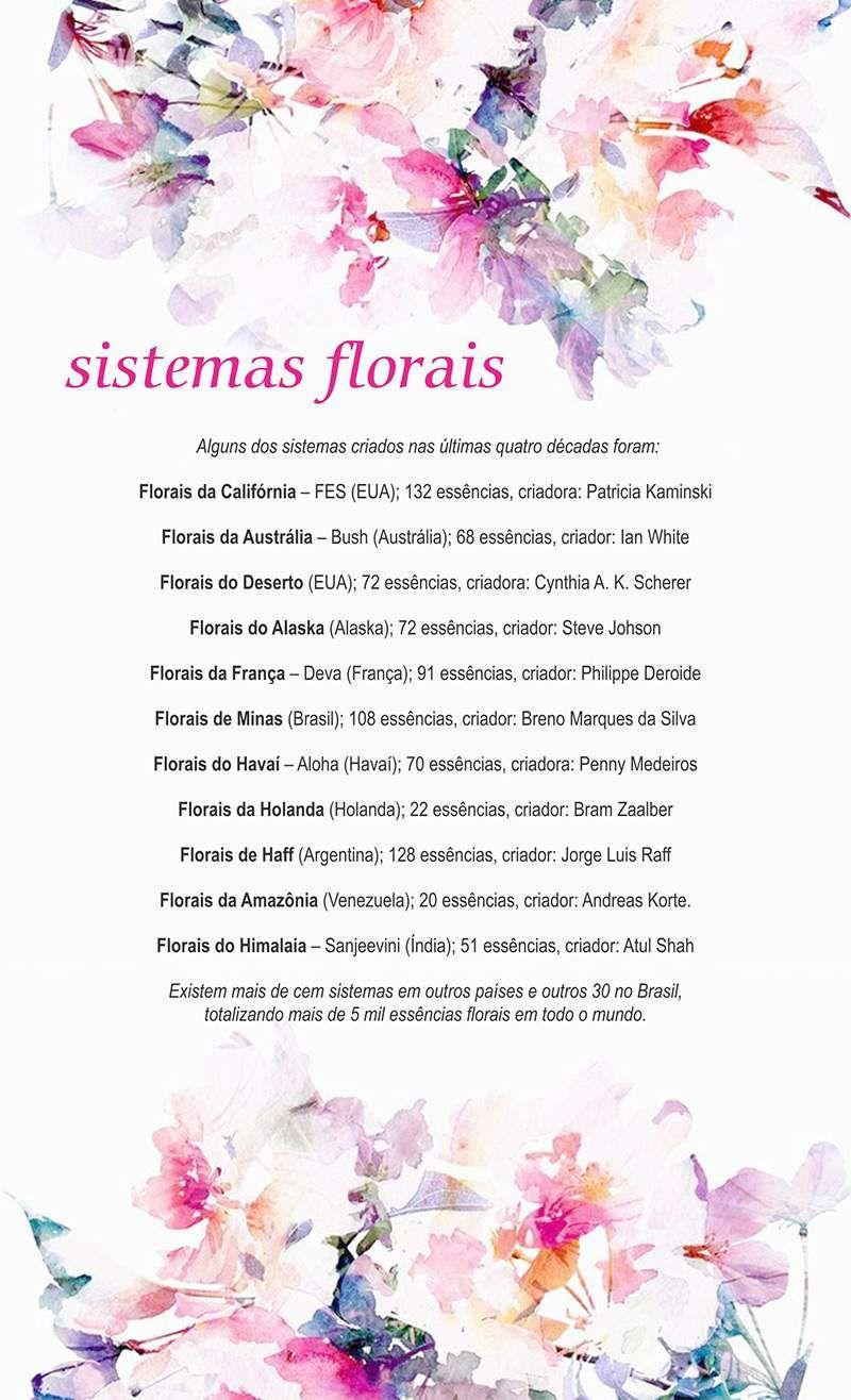 Florais E Chakras Comprazen Flores Florais De Bach Essencia Floral