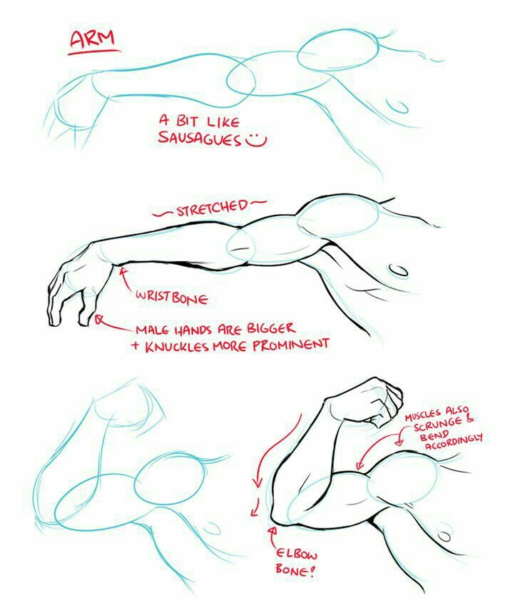 Arm Muscles Text How To Draw Manga Anime Drawing Tips Drawing Tutorial Anatomy Reference