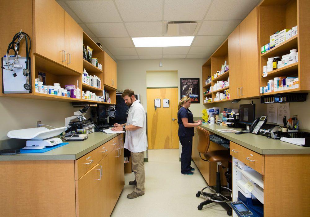 Home With Images Hospital Design Design Hospital Room