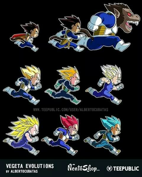 Vegeta Evolutions