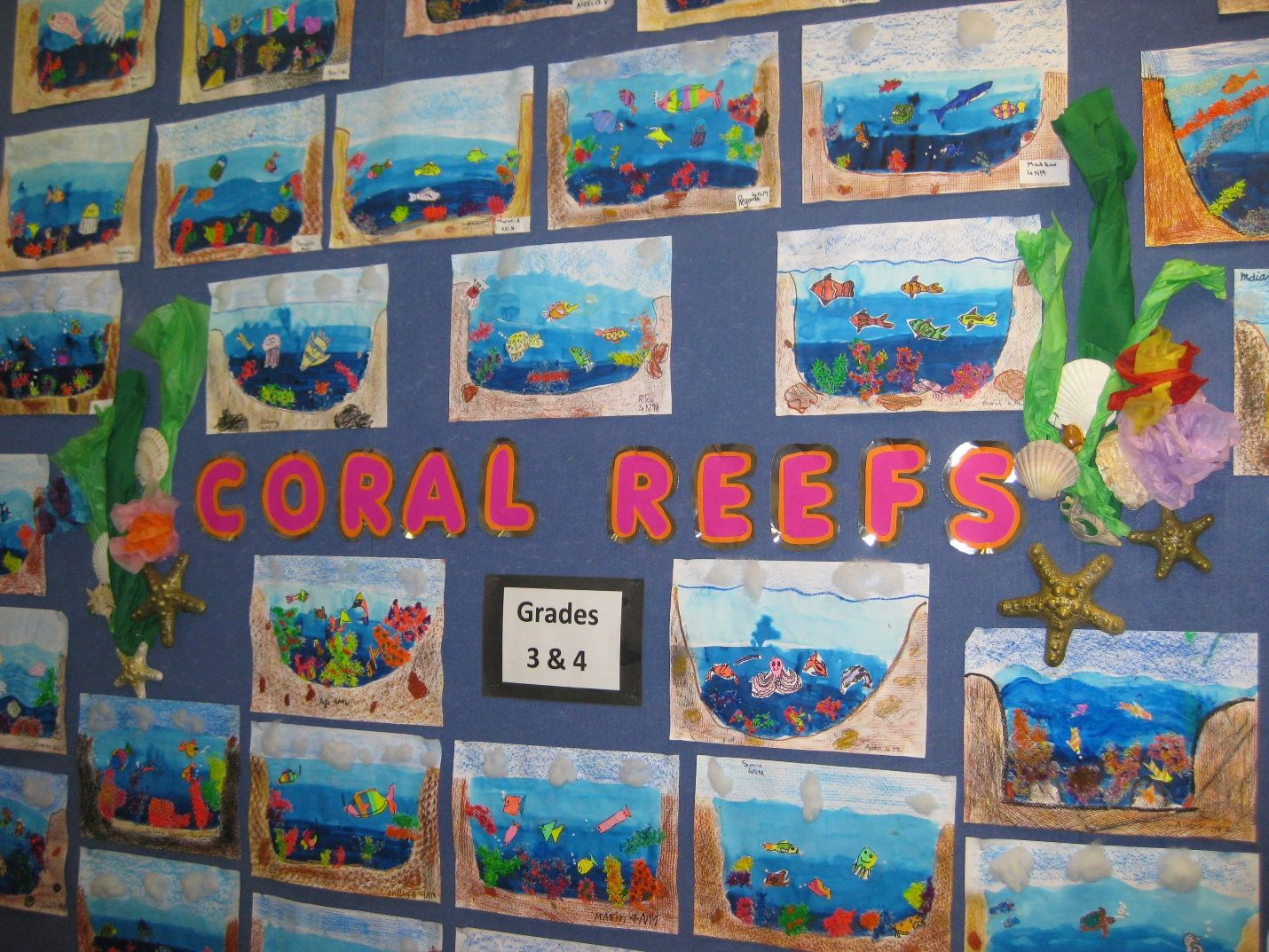 Pin By April Campagnoli Barlett On Great Barrier Reef Art