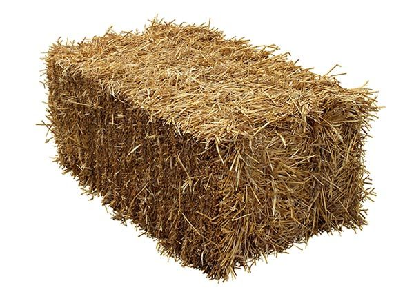 Straw Bale Insulated Cat House Diy Insulated Cat House Cat