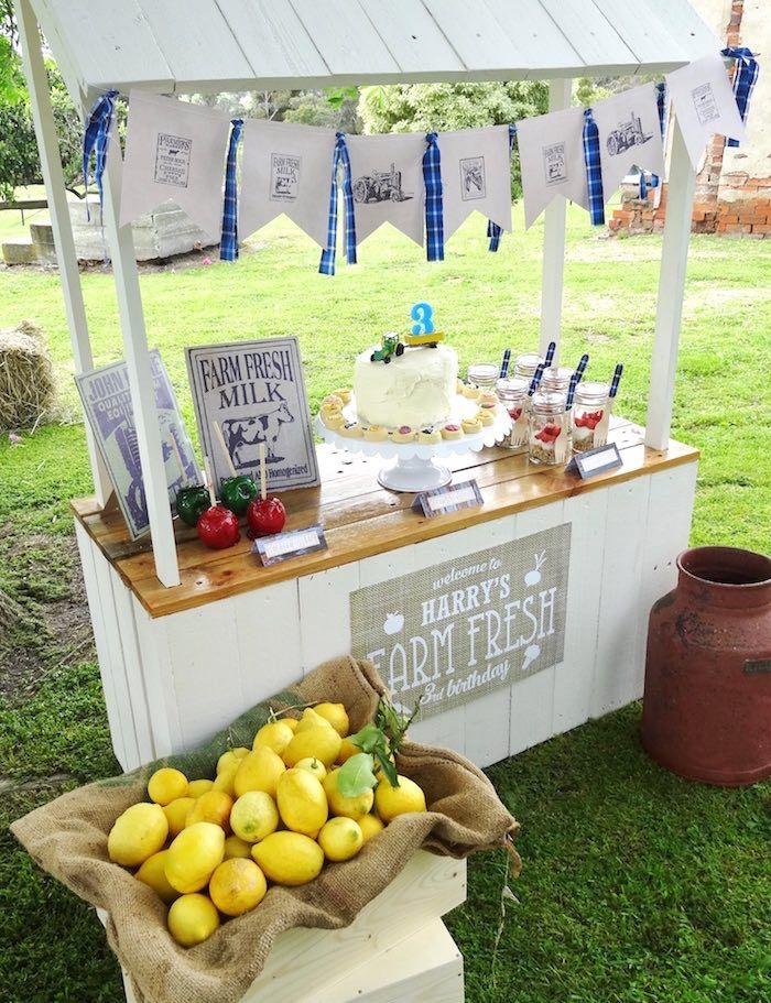 Farm Fresh Birthday Party Farm Barnyard Party Ideas Pinterest
