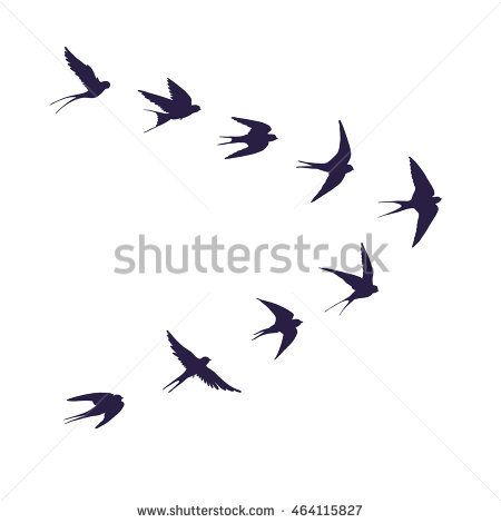 Flock Of Birds Silhouette Swallow Bird Silhouette Tattoos Silhouette Tattoos Birds Tattoo