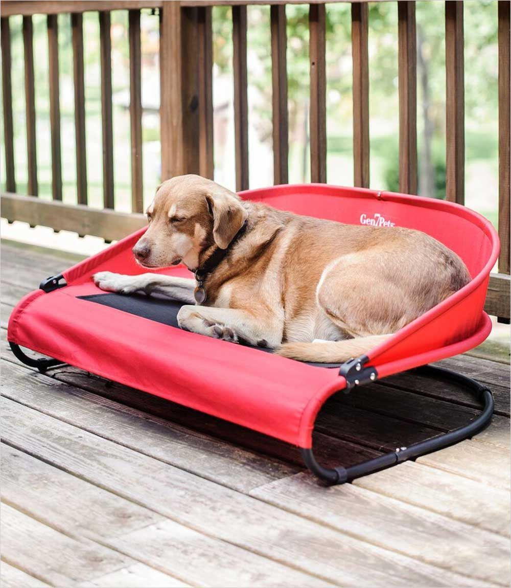 Cool Air Cot For Dogs Pathfinder Red Best Dog Toys Dog Training Barking Pets