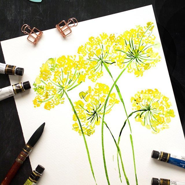 Day 9: Dill stems Catching up with one more for today and hopefully tomorrow I'll be on track. Love the lush yellows in this one and I couldn't help but paint a cluster of these. Perfect filler elements aren't they? . . . #artistsofinstagram #illustrators