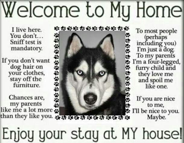Welcome To Husky House Rules Husky My Husky House Rules