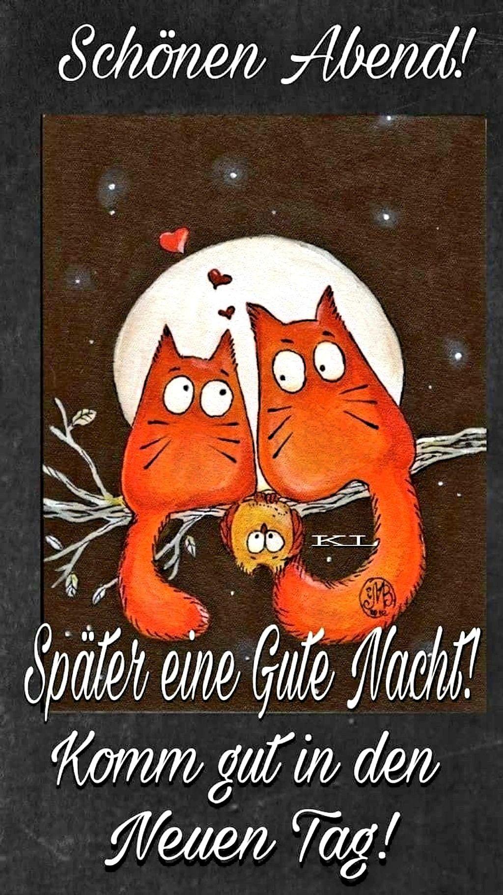 Pin Von Elke Kramer Auf Guten Abend Gute Nacht Gute Nacht Bilder Gute Nacht Nacht