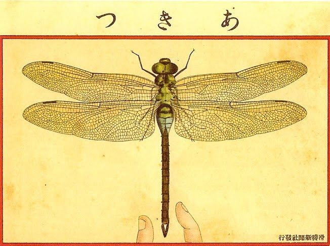 Japanese Postcard Dragonfly 1908 Unknown Artist Color Lithography With Ink