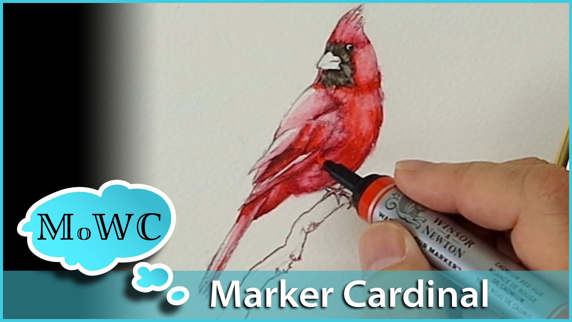 I Paint This Cardinal Using Winsor Newton Watercolor Markers And I