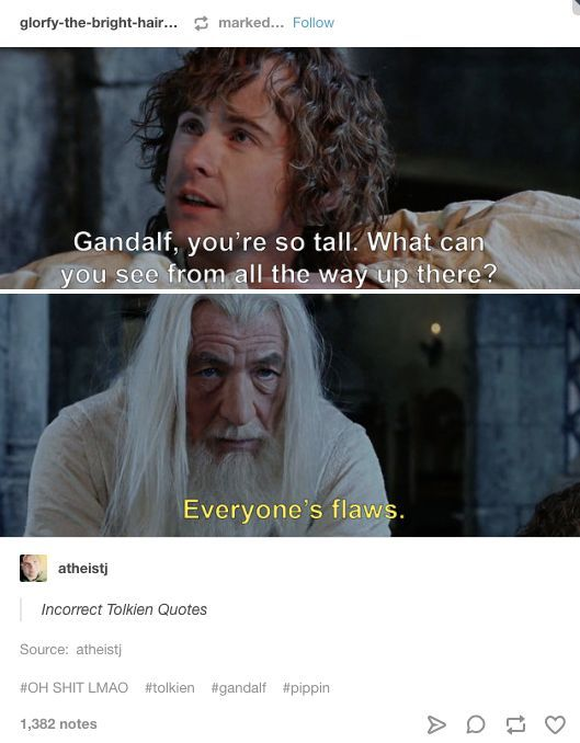 Everyone S Flaws Lotr Funny Lord Of The Rings Gandalf