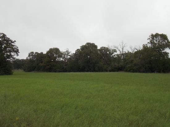 15 Acres in Leon County, Texas - Property - LandAndFarm.com - Land for Sale