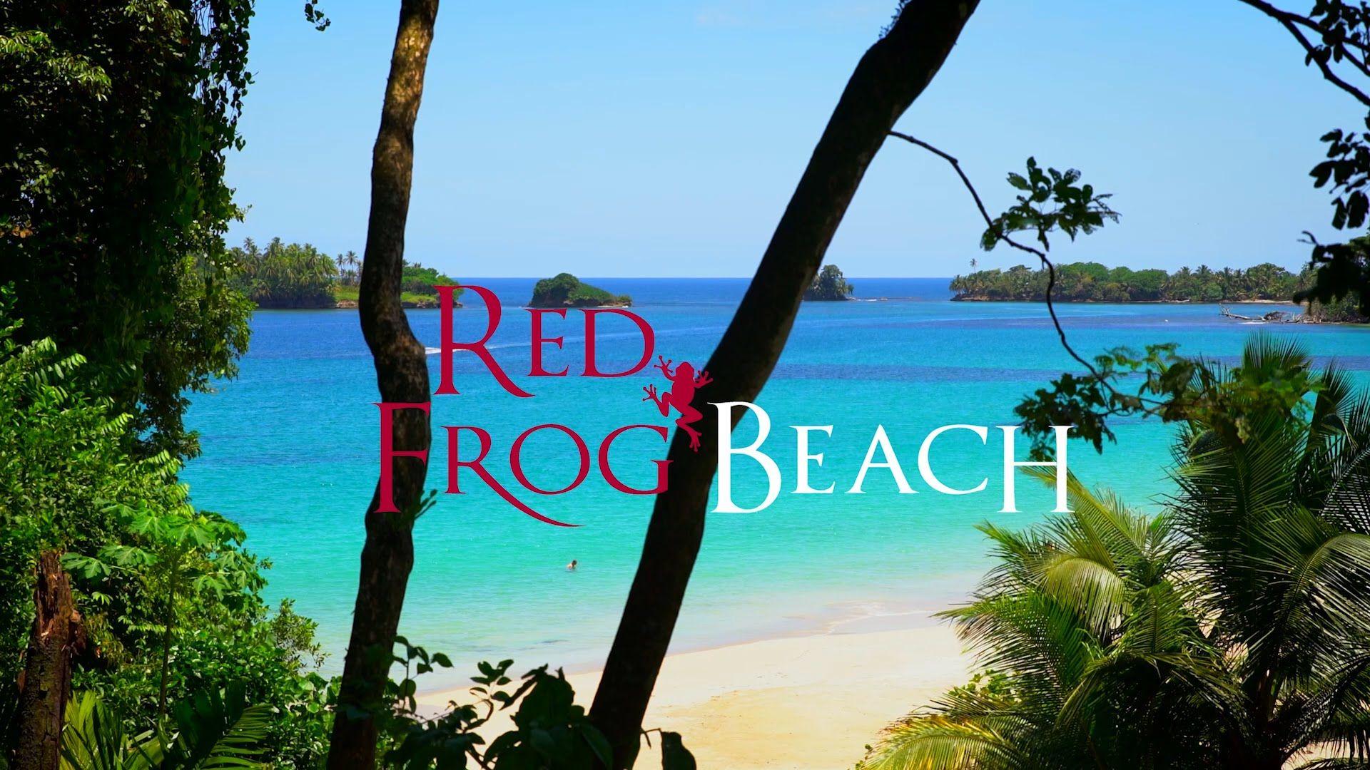 Red Frog Beach Real Estate Bocas Del Toro Panama Toros