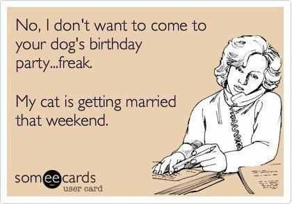 No I Don T Want To Come To Your Dog S Birthday Party Freak My Cat Is Getting Married That Weekend Funny Quotes Haha Funny Laugh