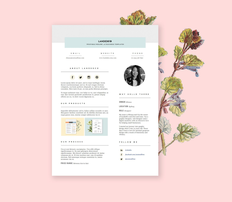Media Kit Template Press Kit Design Pitch Kit For Etsy By Landedco