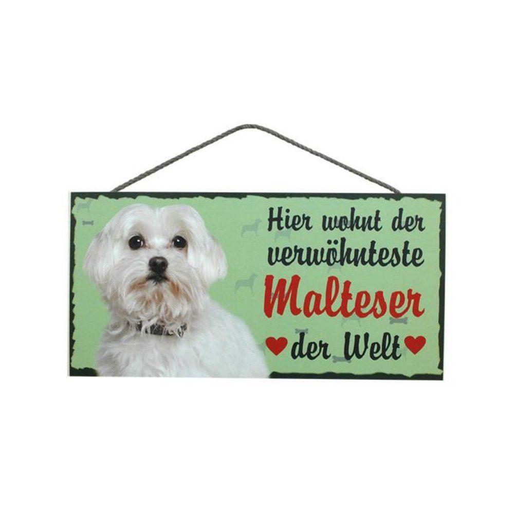 Tierschild Hund Holzschild Türschild Malteser