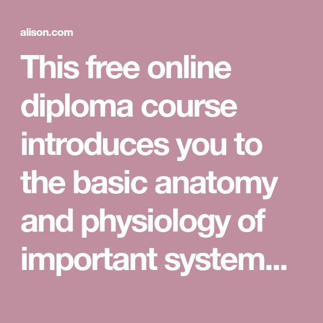 This Free Online Diploma Course Introduces You To The Basic Anatomy