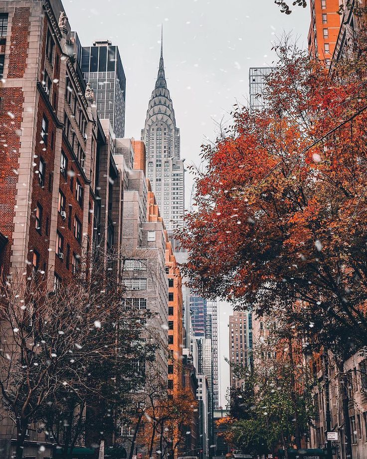 "Loves_NYC on Instagram: ""New York City, USA"