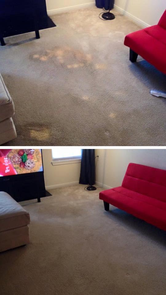 Bleach Spot Repair Bleach Stain Bleach On Carpet Carpet Repair Carpet