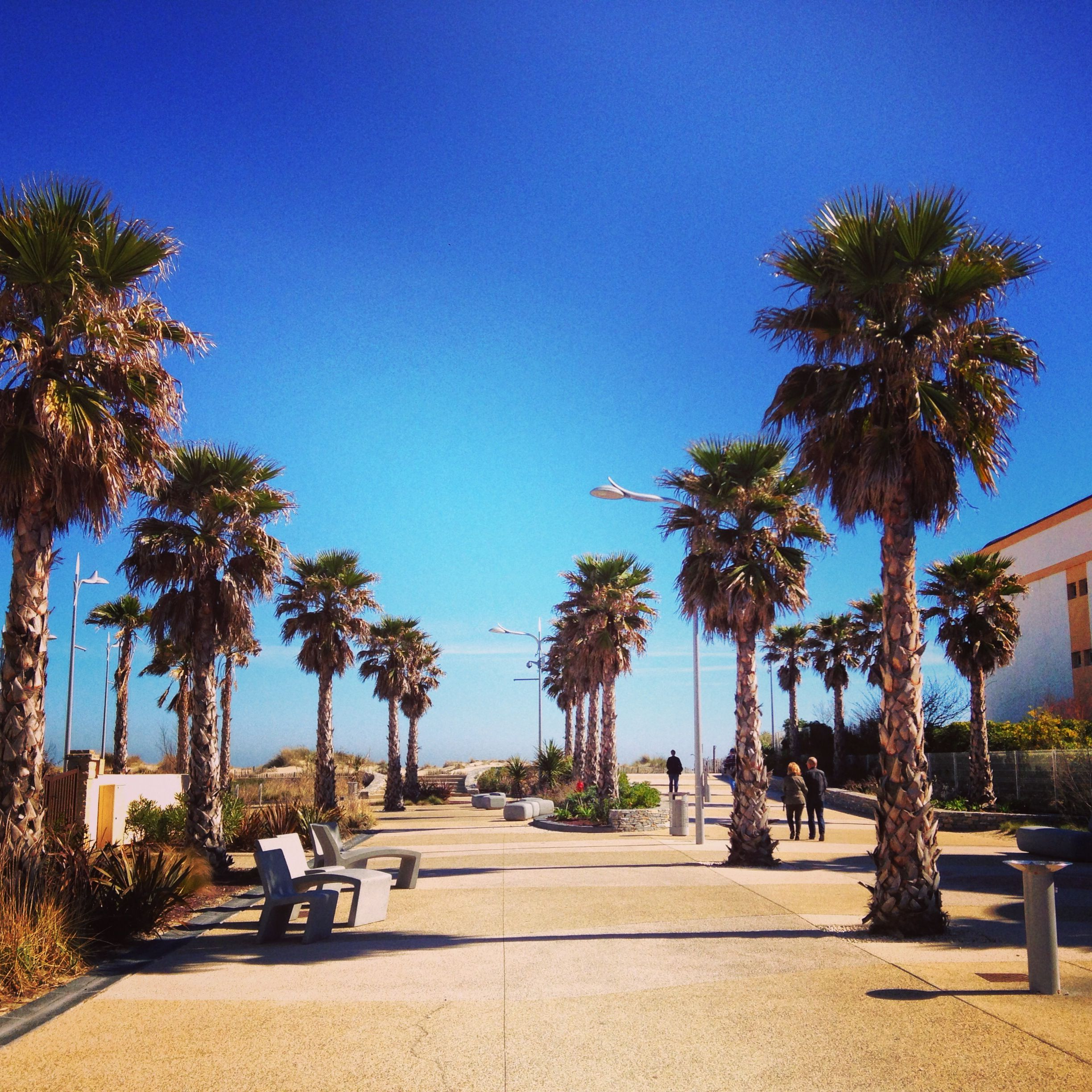 Best Places For Holiday In June: Marseillan Plage, Languedoc. France #march #marseillan