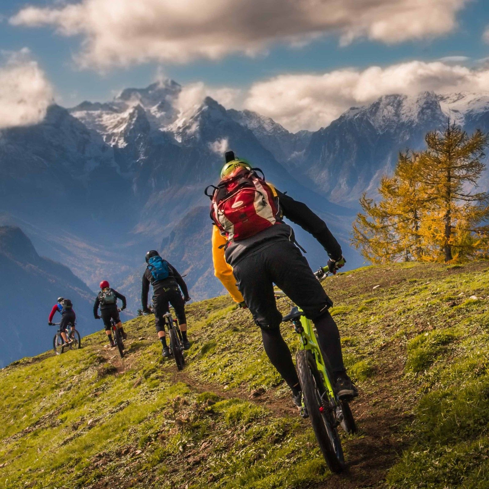 Sweet trail - berto - Mountain Biking Pictures - Vital MTB
