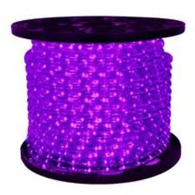 Purple Rope Lights Adorable Northlight Led Indooroutdoor Christmas Rope Lights On A Spool Color Decorating Inspiration