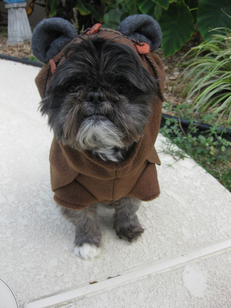 Wookie. EVER! & Handmade Star Wars Ewok Dog Pet Cosplay Costume | Costumes Dog and ...
