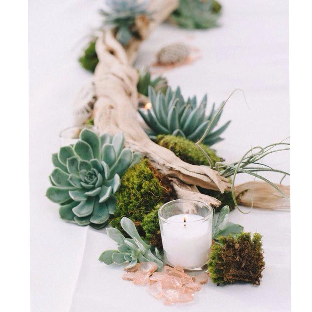Some Sunday lovin'. We love an unusual, different wedding and this driftwood, moss and succulent centrepiece is just that. Unsure who to thank for this goody but it just goes to show that nature makes the best centrepieces and accents to your special day. #moss #unique #driftwood #succulents #wedding #centrepiece #tablescapes #tablescape #weddingdecor #weddingdecoration