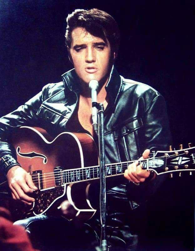 Hot Elvis Presley Elvis Presley Elvis Presley Photos Elvis