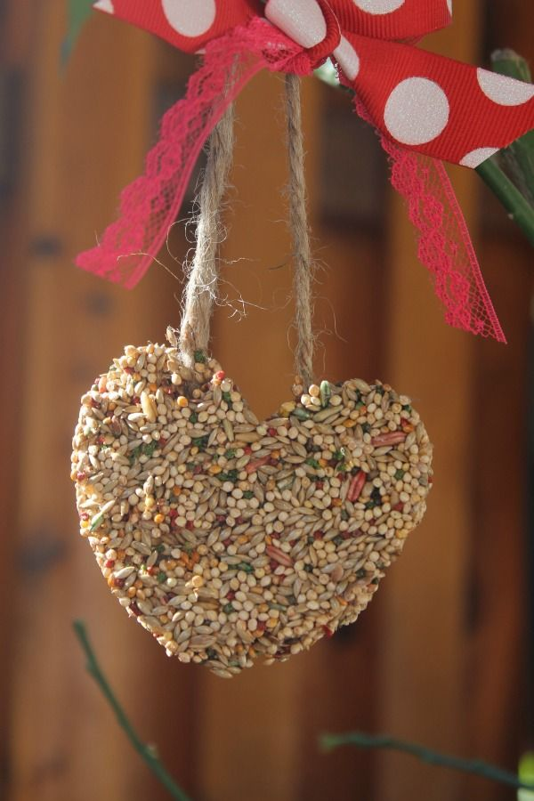 Great Idea For Adult Day Site Project Diy Bird Feeders Ideas For