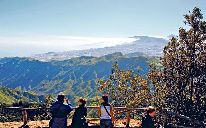 Walking in Tenerife: a long way to Mount Teide