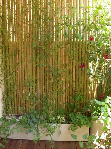 Id es d co pour se prot ger des regards sur son balcon 20 exemples jardin terrasse - Isoler son jardin des regards ...