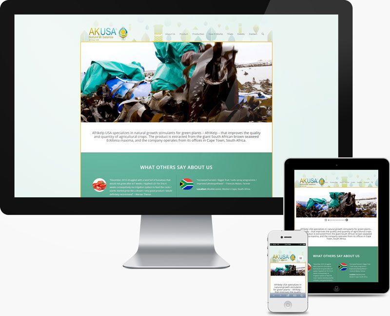Afrikelp Usa San Francisco Web Design Usa San Francisco Web Design Design
