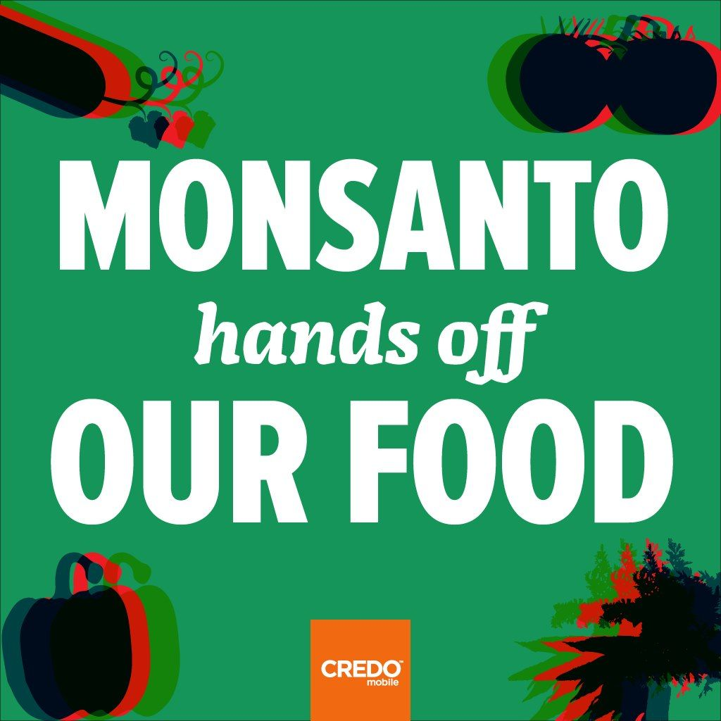 monsanto, GMO, food #monsanto #gmo #geneticallymodified