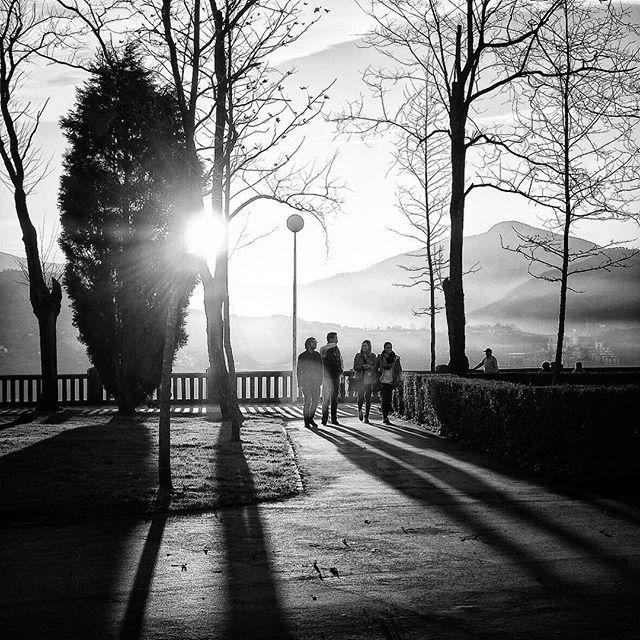 #bilbao #bilbao360 #ourcity #igersbilbao #somosinstagramers #igerseuskadi #igerrak #verybilbao #sol #sun #eguzkia #soleil #artxanda #light #lumière #luz #argia #urbannatura #naturalezaurbana #jardines #gardens #basquecountry #bw #bn #blancoynegro #blackandwhite #monochrome
