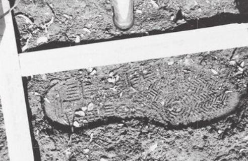 Richard Ramirez's Avia footprint, size 11 1/2, left in the Zazzara backyard