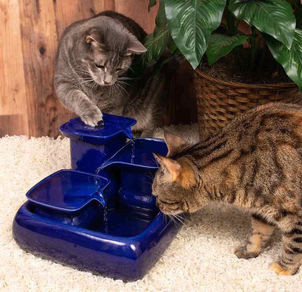 Cat water fountains Ceramic drinking fountain for pets