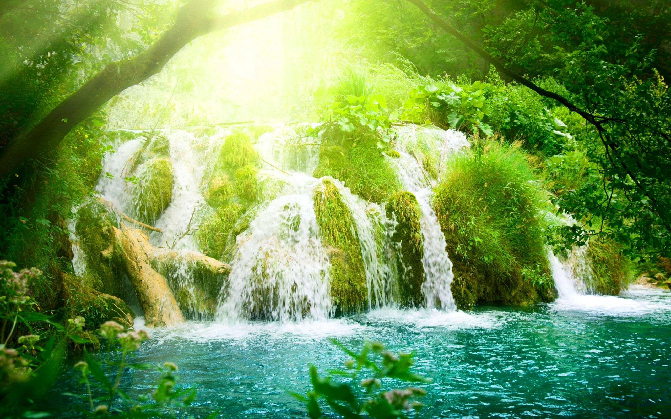 Paradise River Waterfalls Wallpapers